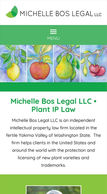 Responsive Mobile Attorney Website for Michelle Bos Legal LLC
